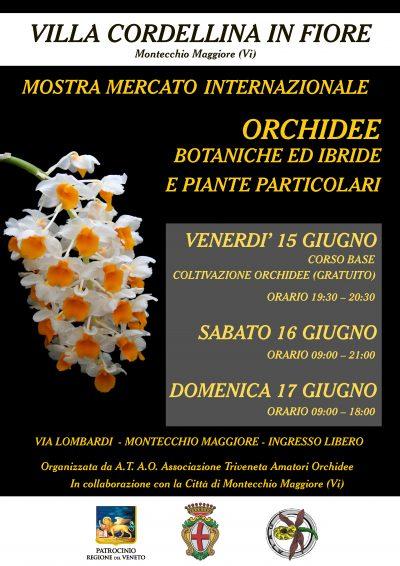 Locandina Montecchio mostra mercato